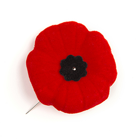 Wear A Poppy To Remember